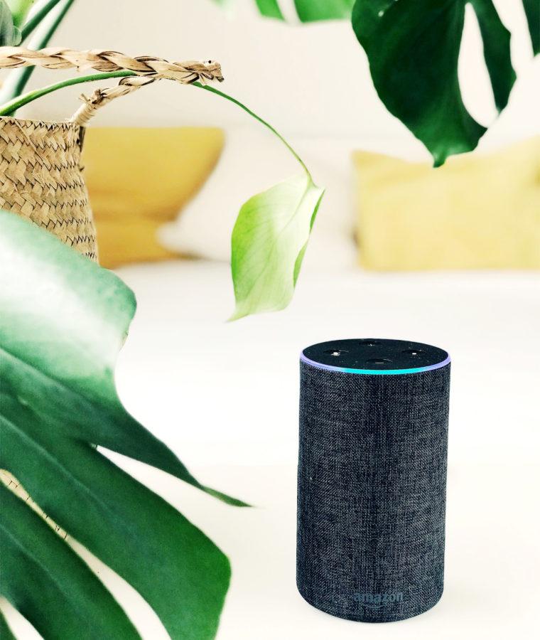 ¿Es Alexa tu mejor compañera de piso?